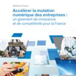 Rapport Numérique en France