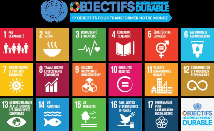 17 objectifs de développement durable proposés par l'ONU en 2017 (les « ODD » comme on dit)